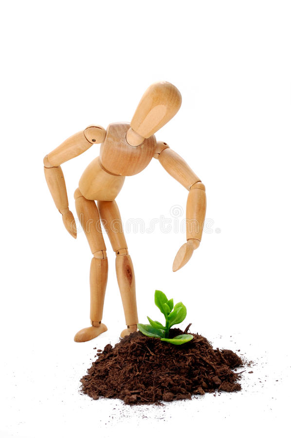 Caring for a new life. A sprout, new life or envroment concept with puppy and little plant stock photos