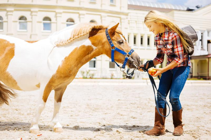 Caring schoolgirl coming to stable for feeding little pony. Coming to stable. Caring beautiful schoolgirl coming to stable for feeding little pony with red apple royalty free stock photo