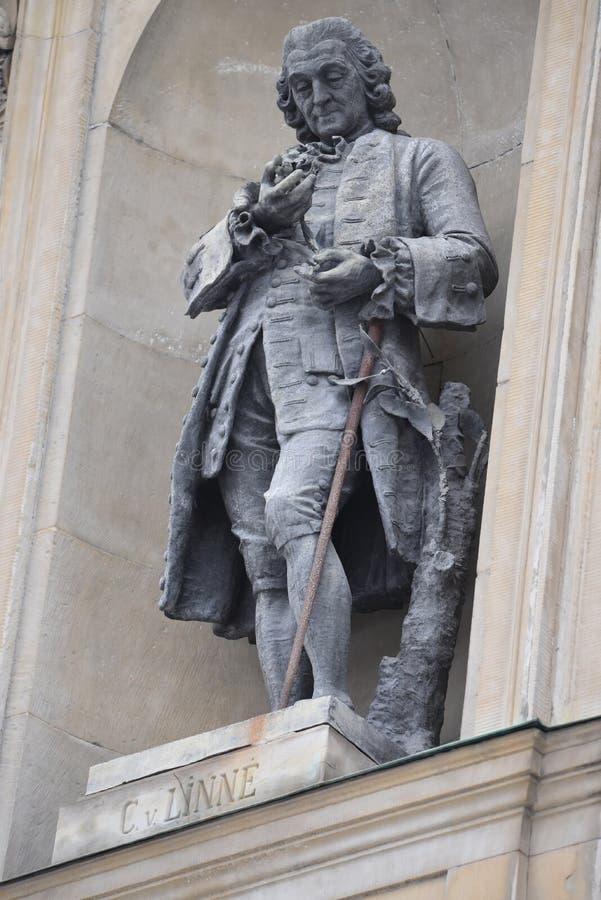 Carl Linnaeus Monument op de Royal Palace-voorgevel in Stockholm, Zweden royalty-vrije stock foto's