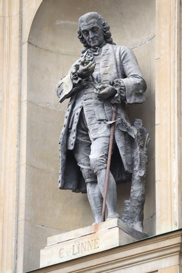 Carl Linnaeus-standbeeld stock fotografie