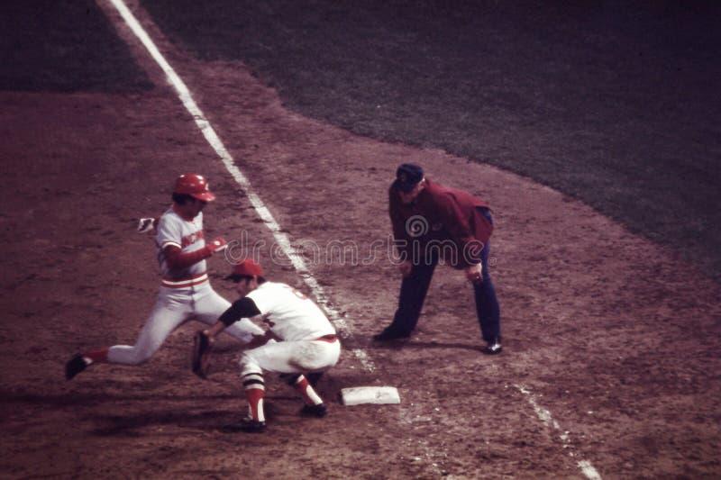 Carl Yastrzemski 1975 World Series royalty free stock image