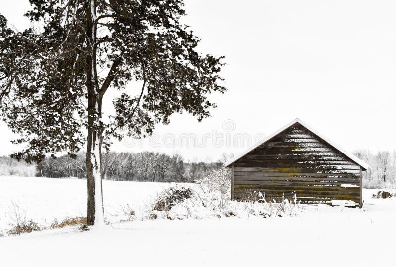 Carlingue de rondin au pays des merveilles d'hiver images libres de droits