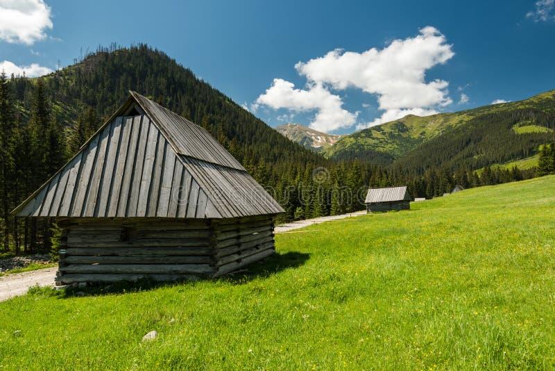 Carlingue en bois traditionnelle en parc national de Tatra photos libres de droits