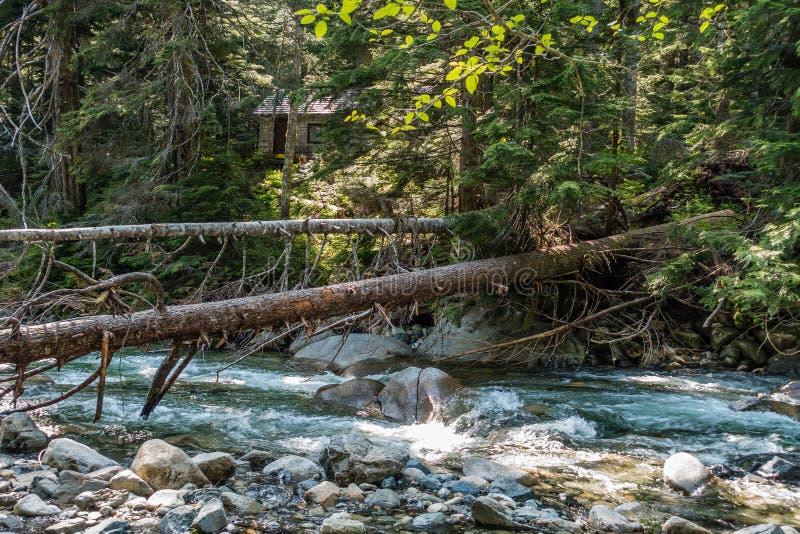 Carlingue par The Creek 2 image stock