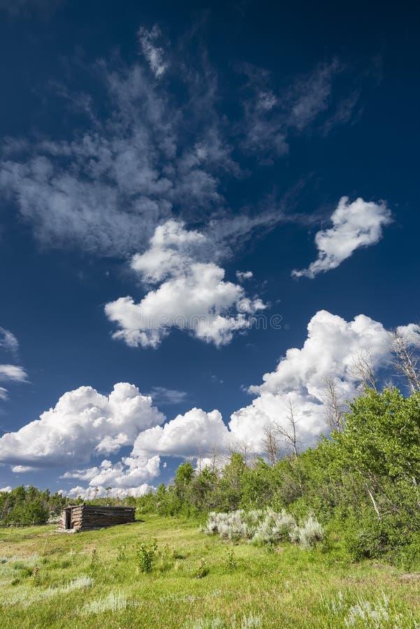 Carlingue sur la prairie du Wyoming images stock