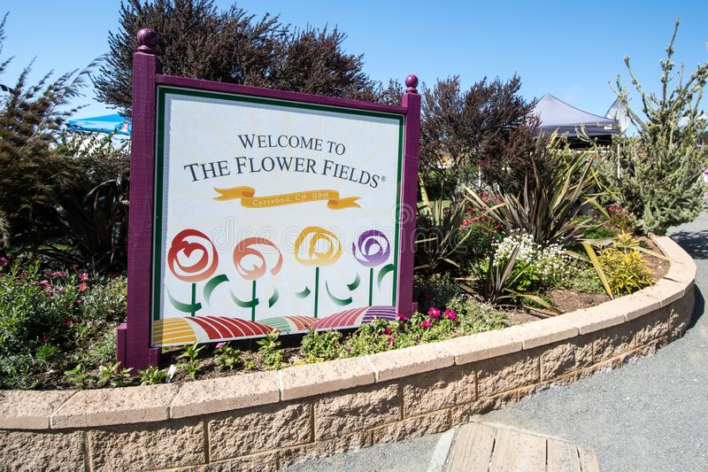Carlsbad, California - muestra que acoge con satisfacción a visitantes a los campos de flor de Carlsbad, un destino turístico pop foto de archivo