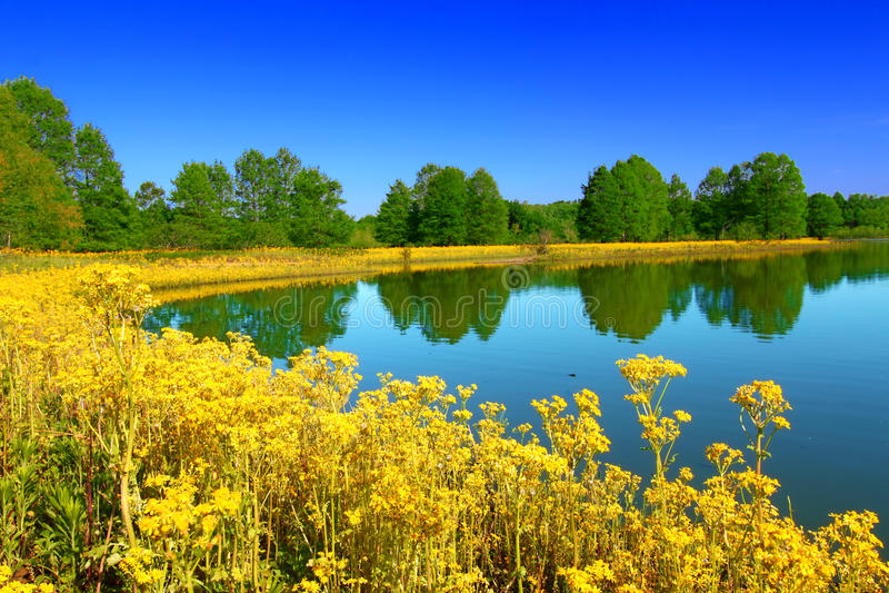 Carlyle Lake Hazlet State Park lizenzfreie stockfotografie