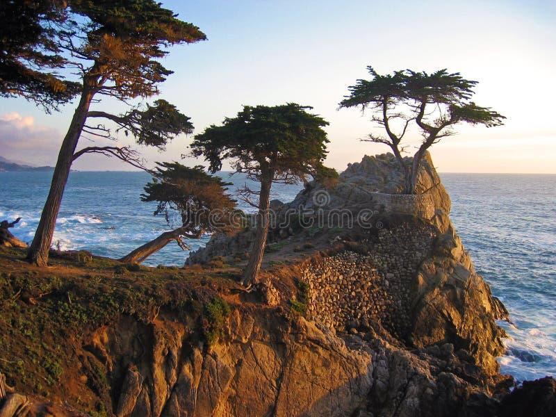 Carmel海岸 免版税库存图片