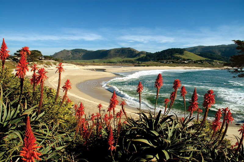 Carmel Beach royalty free stock photography