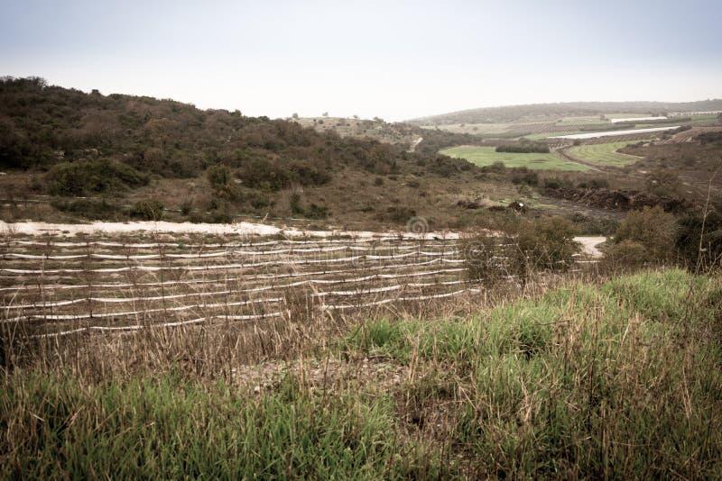 Carmel e la Galilea più bassa fra Zihron Yaakov, Nazaret, Safed, fotografie stock