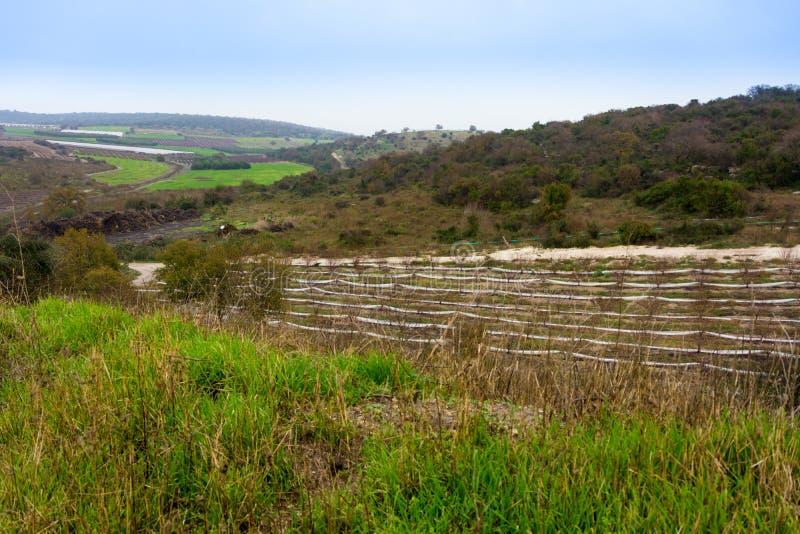 Carmel e la Galilea più bassa fra Zihron Yaakov, Nazaret, Safed, immagini stock libere da diritti