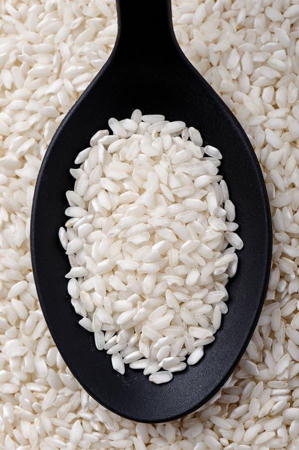 Carnaroli-Reis lizenzfreies stockfoto