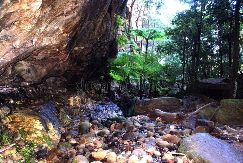Carnarvon峡谷地下澳大利亚 库存图片
