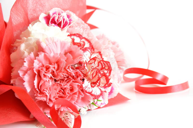 Carnation flower gift. Bouquet of carnation flower and ribbon in white background royalty free stock photography
