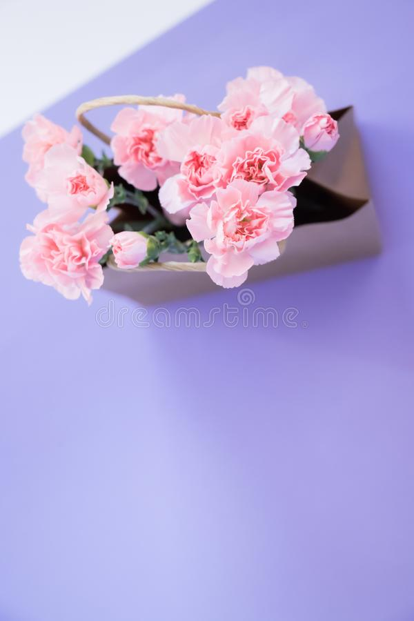Carnation flowers into craft paper bag on purple background. Spring`s concept. Top view royalty free stock images