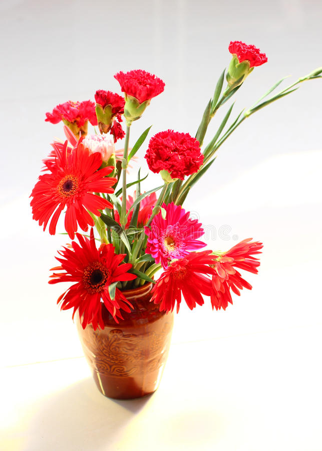 Carnation and gerbera. Very beautiful royalty free stock photography