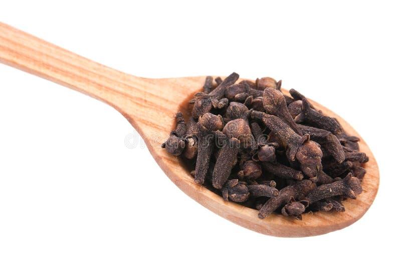 Carnation spice in spoon