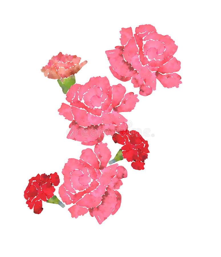 This is a picture of Zany Pink Carnation Drawing