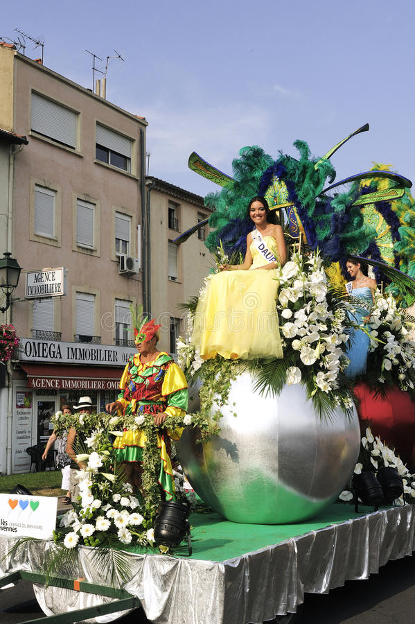 Carnaval Alès photo libre de droits
