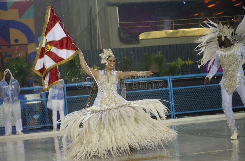 Carnaval Alegria 2019 a Dinamarca Zona Sul foto de stock royalty free