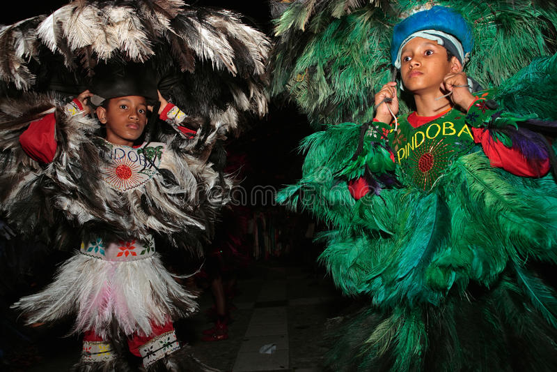 Carnaval Brésil de festival de boi de meu de Bumba photo libre de droits