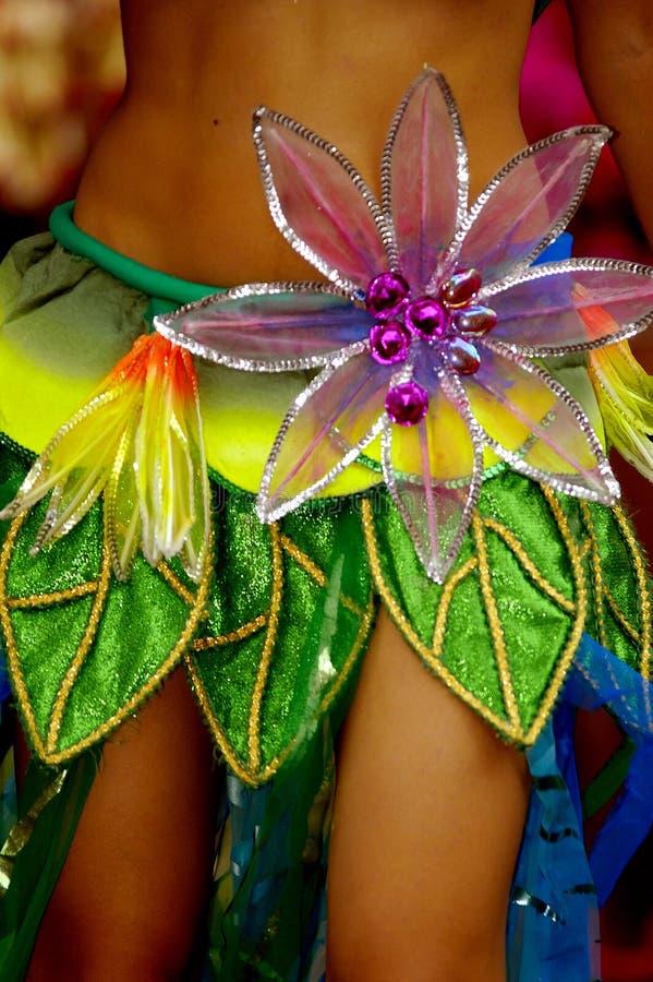 Vestido do dançarino da samba foto de stock royalty free