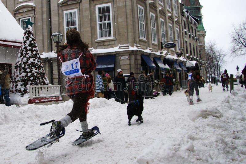 Carnaval de Quebec: Raza de Snowshoeing. foto de archivo