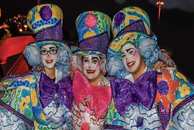 Carnaval 2014 de Santa Cruz de Tenerife imagens de stock