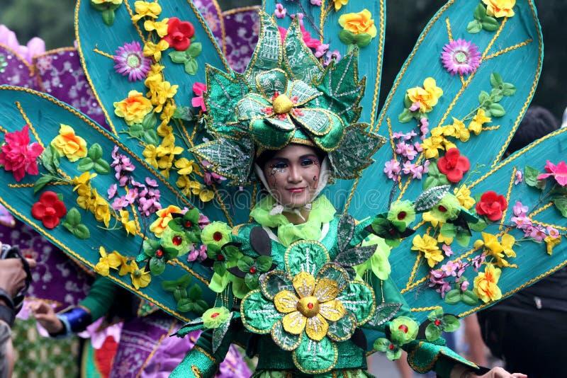 Carnaval do traje da natureza foto de stock royalty free
