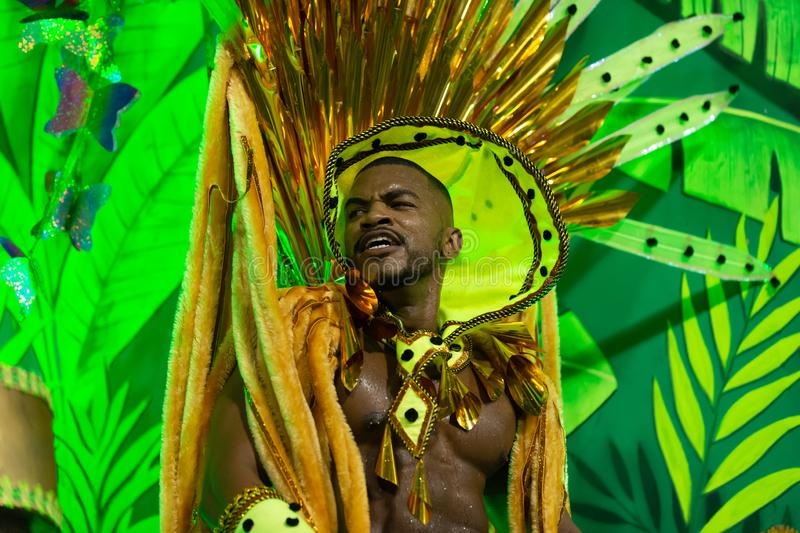Carnaval 2019 - Estacio de Sa fotografia de stock