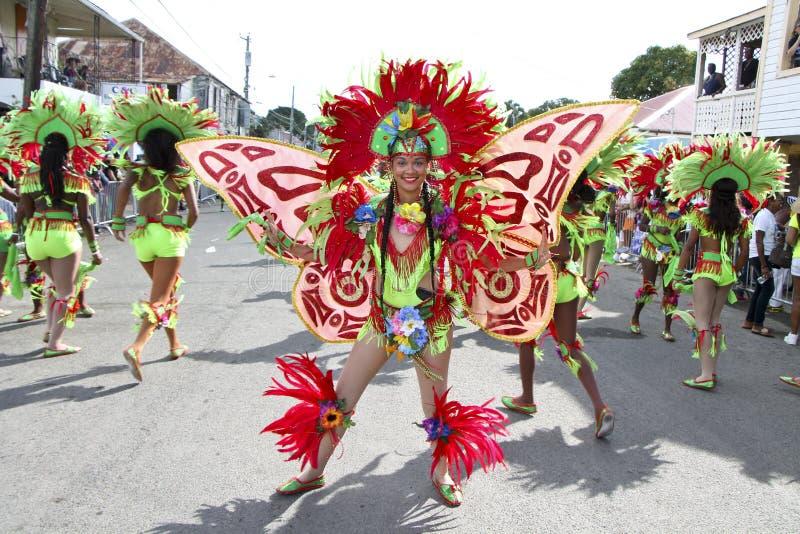 Carnaval-Kleuren stock fotografie