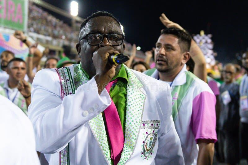 Carnaval 2019 - Mangueira photo stock
