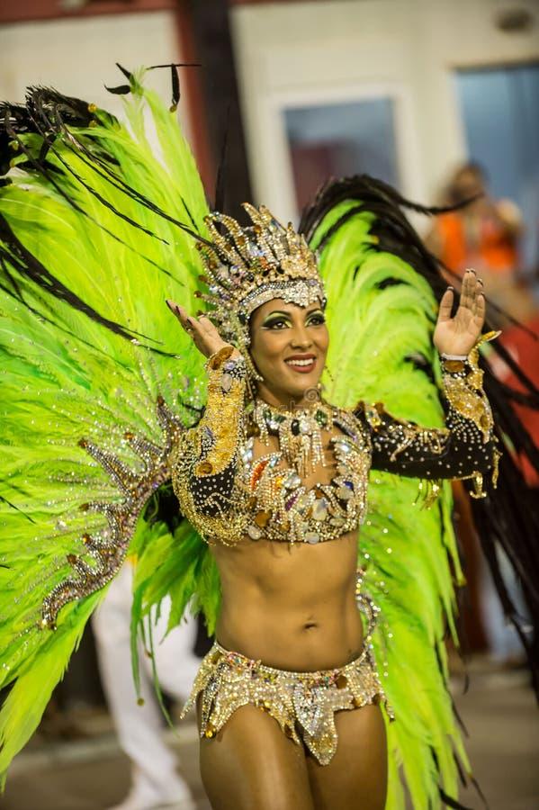 Carnaval 2014 - Rio de Janeiro imagen de archivo libre de regalías