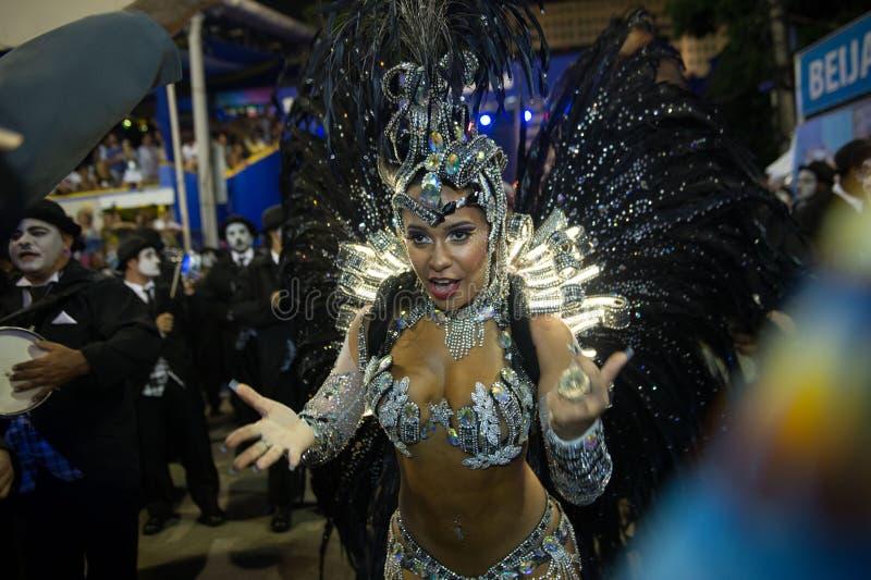 Carnaval 2014 - Rio de Janeiro fotografía de archivo libre de regalías