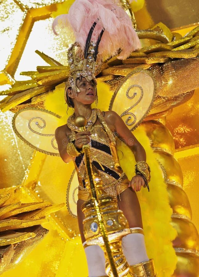 Carnaval in Rio de Janeiro royalty-vrije stock afbeeldingen