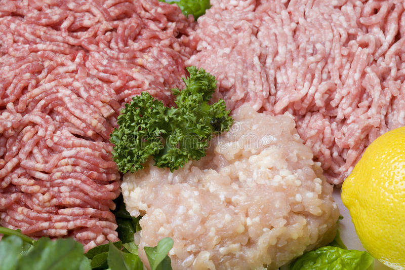 Carne à terra imagem de stock