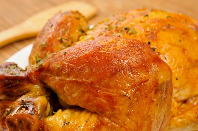 Carne asada Turquía fotos de archivo libres de regalías