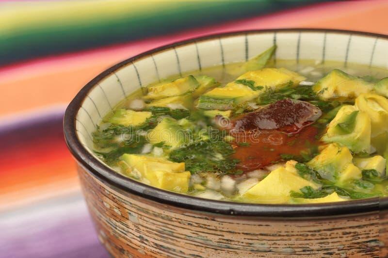 Carne, avocado, minestra della cipolla fotografia stock