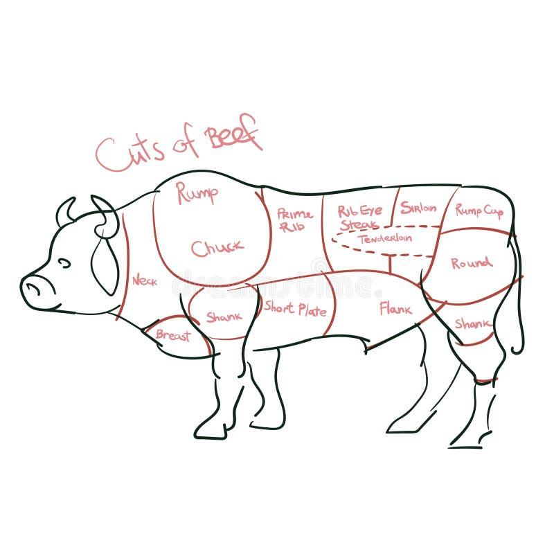 Carne cortada ou cortes de carne ilustração stock