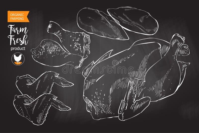 Carne da galinha ilustração stock
