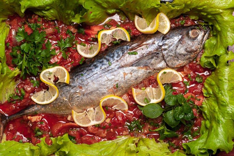 Carne de atún pochada en salsa de tomate imagen de archivo