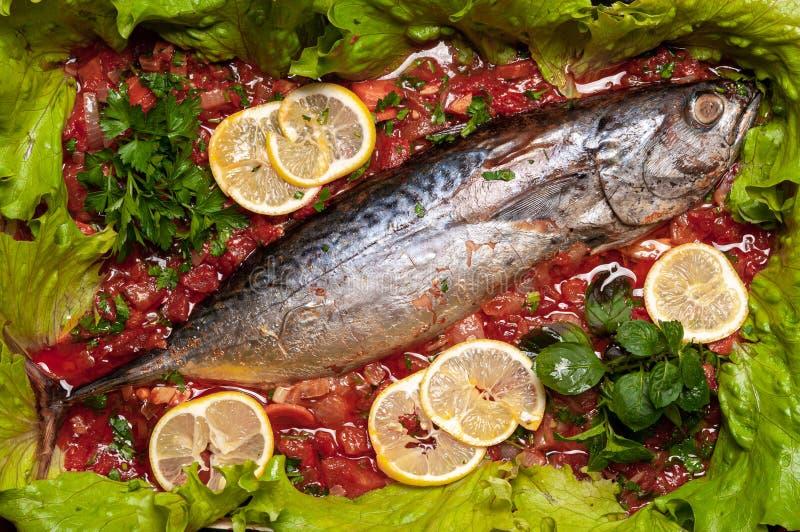 Carne de atún pochada en salsa de tomate foto de archivo