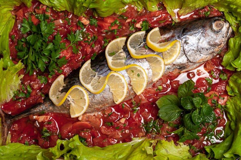 Carne de atún pochada en salsa de tomate fotos de archivo libres de regalías