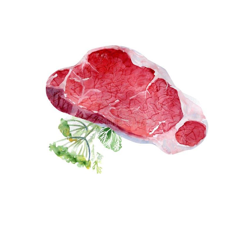 Carne de la acuarela ilustración del vector