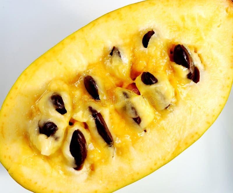 Carne de la fruta común de la papaya foto de archivo libre de regalías