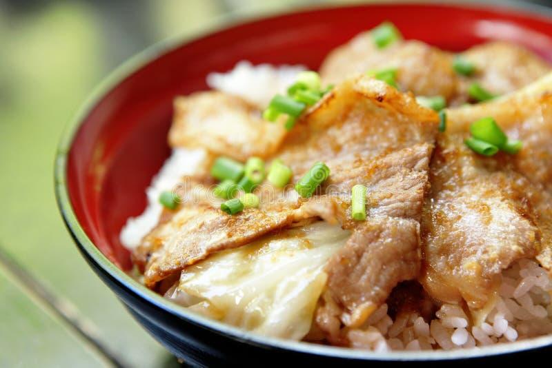 Carne de porco com arroz imagens de stock
