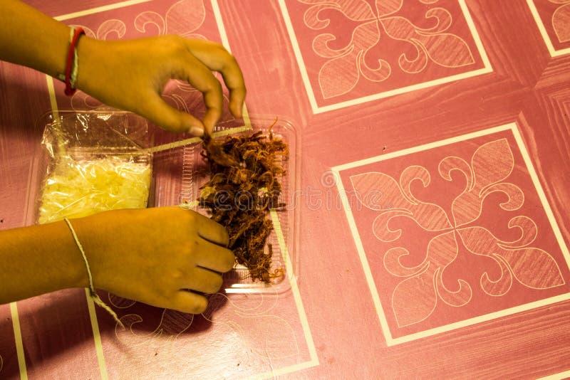 Carne di maiale affettata croccante della mano immagine stock