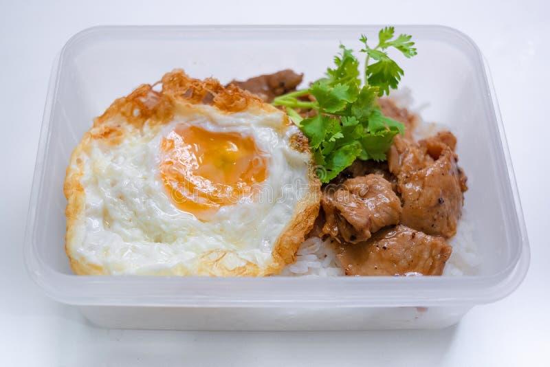 Carne di maiale fritta con il pepe dell'aglio e l'uovo fritto su riso in isola della scatola fotografia stock