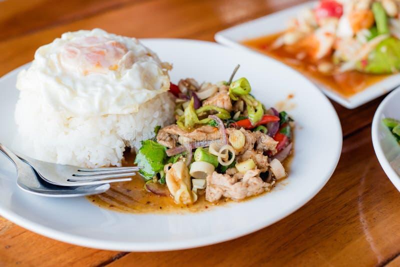 carne di maiale in padella ed erba con riso o Jango in padella, foo tailandese immagini stock
