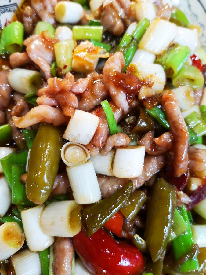 Carne di maiale piccante Chongqing Style Spicy Food immagine stock libera da diritti